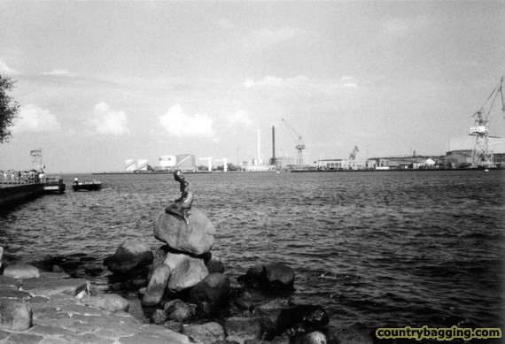 Little Mermaid with oil refinery - www.countrybagging.com